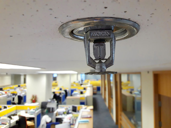 Picture of Fire Sprinkler in a Small Business