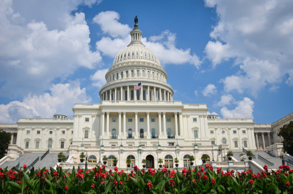 Picture of the US Capital Building